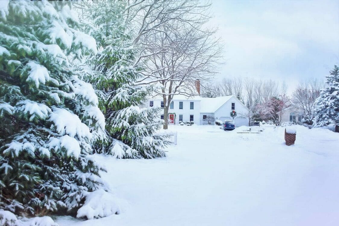 A house and pine trees covered in snow   Painting services near me